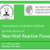 International Combustion Institute, Summer School,  Near-Wall Reactive Flows 6th - 10th , Bensheim, GermanyJune 2016